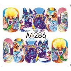 Слайдер-дизайн A-1286