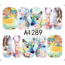 Слайдер-дизайн A-1289